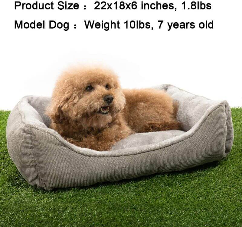 hollypet pet bed
