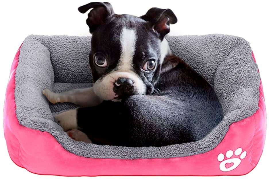 powerking dog bed